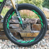 Thumbnail image for WTB Trail Boss 3.0 Review