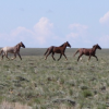 Thumbnail image for Sweetwater County Wyoming – Rock Springs Day 1
